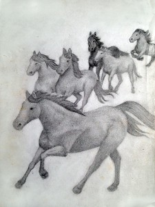 "Brumbies. Inspired by A.B. 'Banjo' Patterson's ""The Man from Snowy River""."