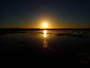 Sunrise over the billabong in Kakadu