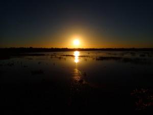 Sunrise over the billabong in Kakadu