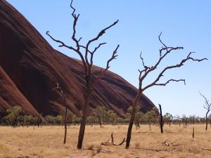 Around Uluru